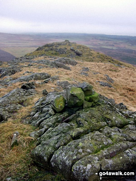 The Knott (Stainton Fell) summit