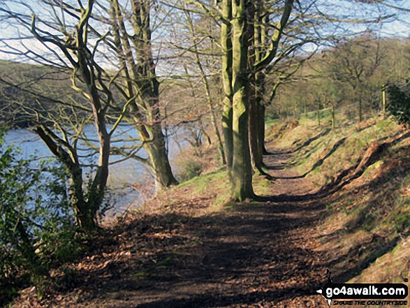 Path along the shore of Ryburn Reservoir