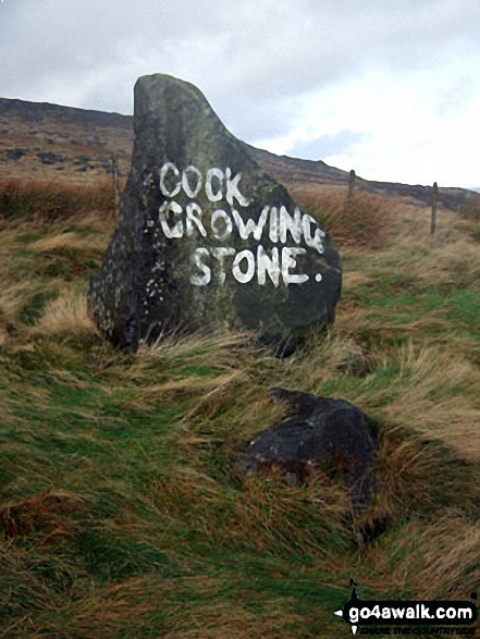 The Cock Crowing Stone on Meltham Moor. Walk route map wy106 West Nab and Horseley Head Moss from Meltham photo