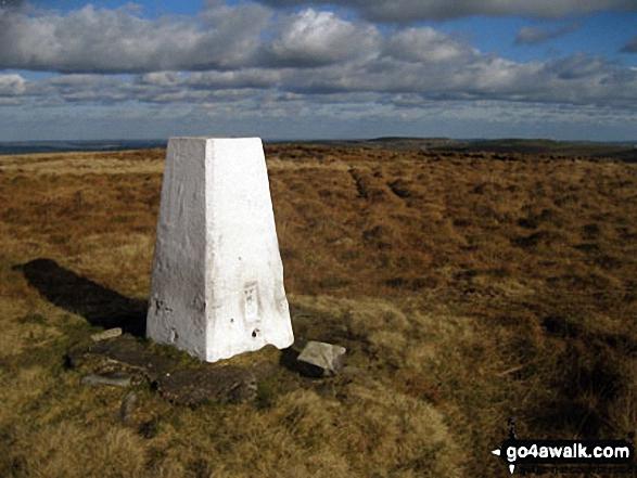 Dog Hill (Rishworth Moor) summit trig point