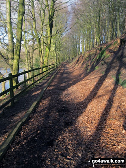 Ryburn Reservoir shore path