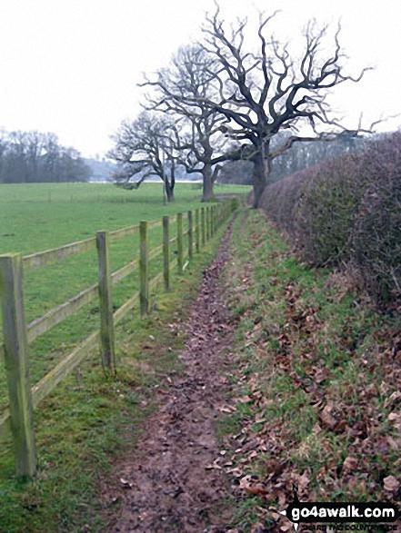 Footpath near Crimps Farm