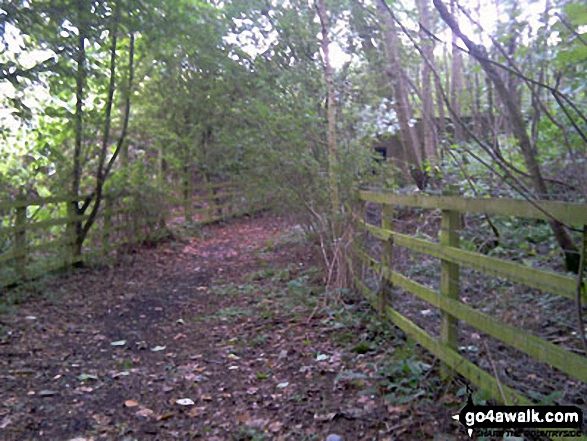 The path leading to tunnel under the M23 near Steners Hill. Walk route map su125 South Nutfield from Bletchingley photo
