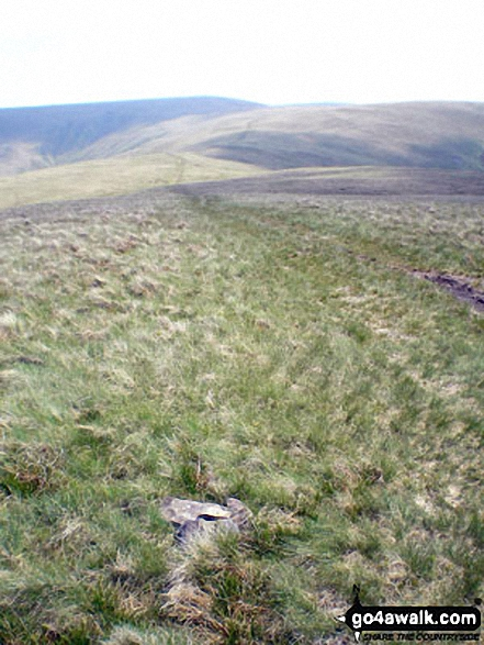The Calf from Bush Howe summit cairn