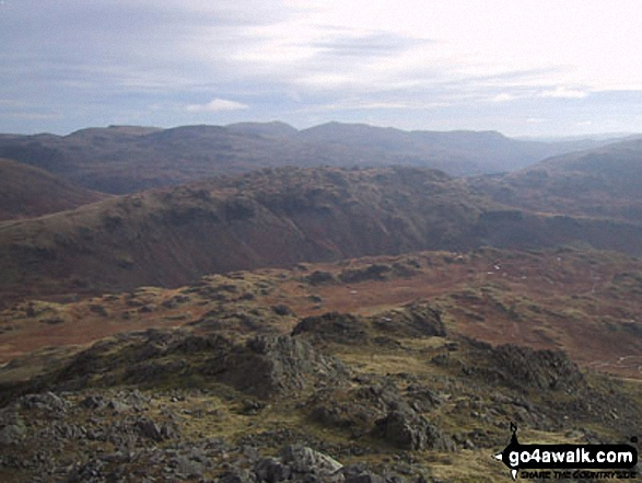 Walk c175 Slight Side and Sca Fell from Wha House Farm, Eskdale - Little Stand (foreground), Pike of Blisco (Pike o' Blisco) (left), Wetherlam and The Old Man of Coniston (right) from Slight Side