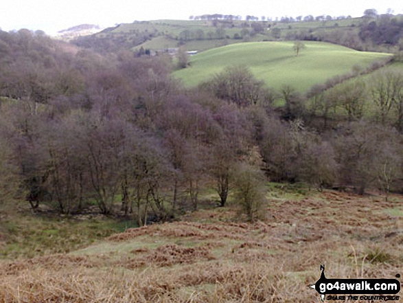 Greasley Hollow from the ruined Mareknowles Farm