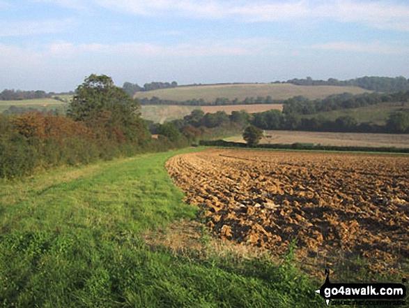 Fields near Bodsham