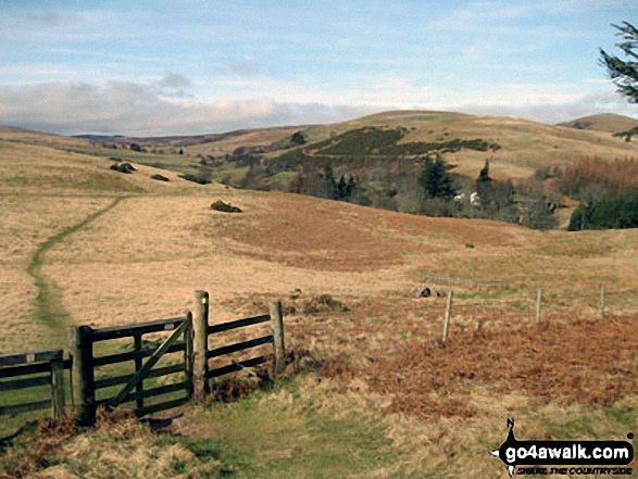 The St Cuthbert's Way heading towards Wooler Common with Coldberry Hill (centre right) and Humbleton Hill (far right)