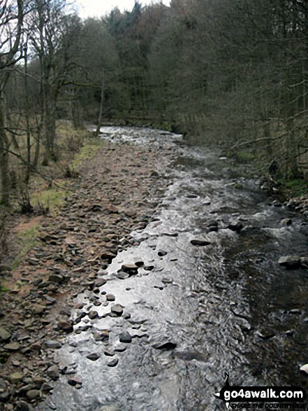 Coldgate Water at Colgate Mill