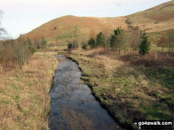 Meg's Hill from Linhope Farm