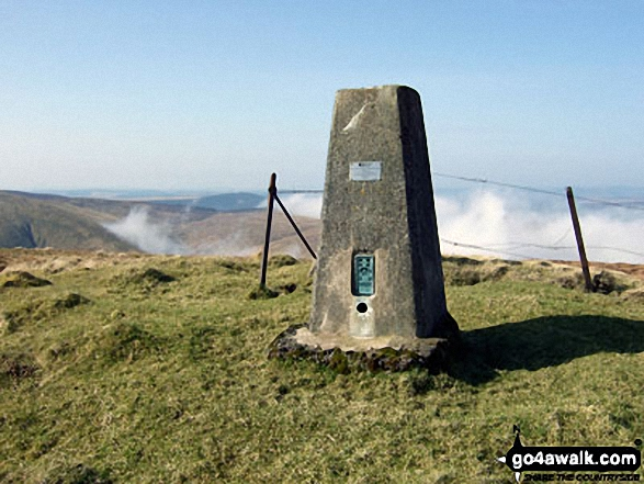 Wisp Hill (Teviothead) summit trig point
