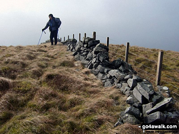 Walk Pike Fell walking UK Mountains in The Scottish Borders  Dumfries and Galloway The Borders   Scotland