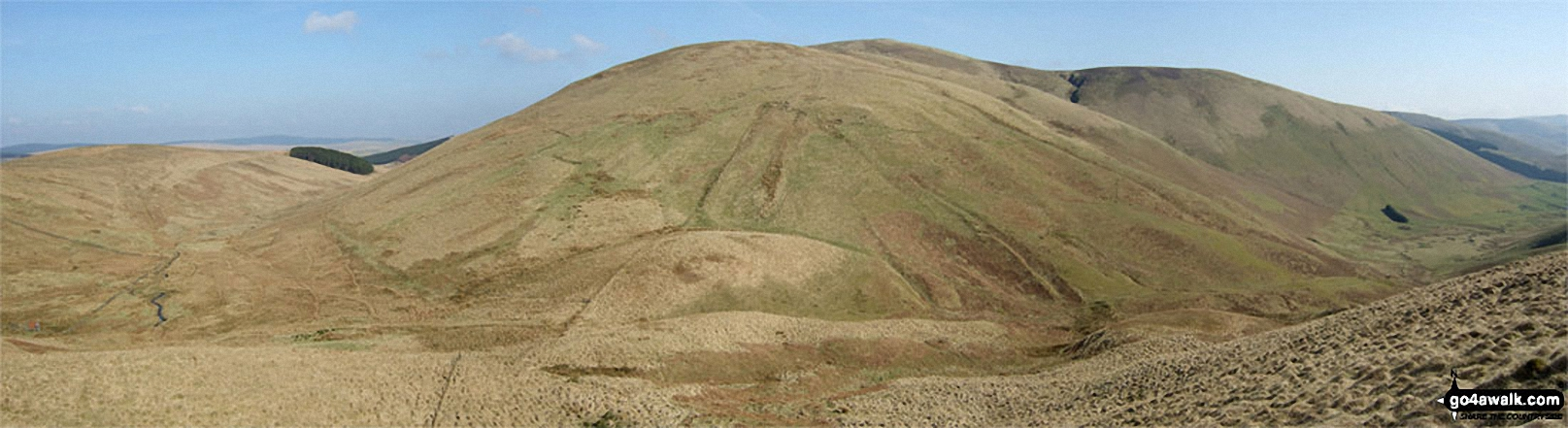 Ewenshope Fell and Wisp Hill (Teviothead) from Pikethaw Hill