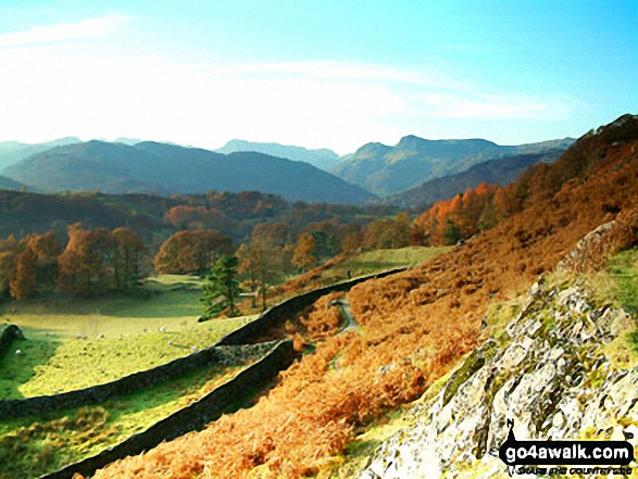 The Langdale Pikes from the lower slopes of Loughrigg Fell