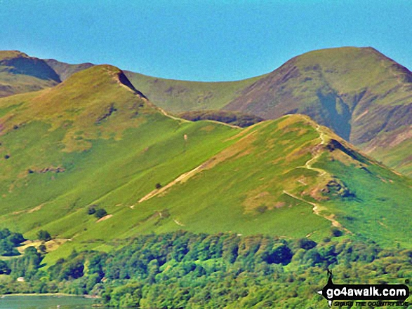 Cat Bells (Catbells) with Dale Head (Newlands) & Hindscarth beyond from Latrigg