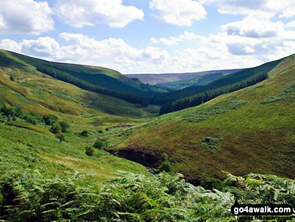 Looking back down West End River to The Upper Derwent Valley from Ridgewalk Moor