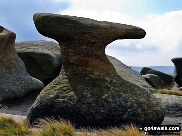 Anvil Stone at Bleaklow Stones (Bleaklow Hill)