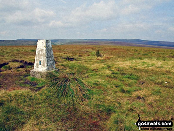 Westend Moor Pillar (Trig Point)