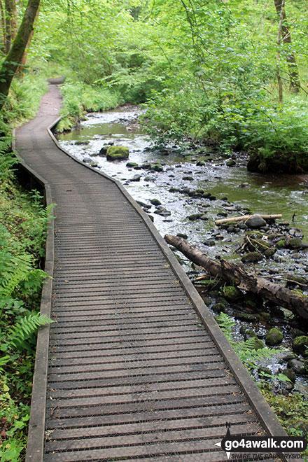Walk h158 The Fairy Glen Waterfalls from Rosemarkie, The Black Isle - The start of the Fairy Glen Waterfalls walk
