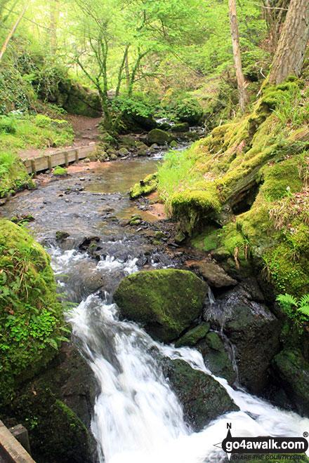 Walk h158 The Fairy Glen Waterfalls from Rosemarkie, The Black Isle - The Fairy Glen Waterfall