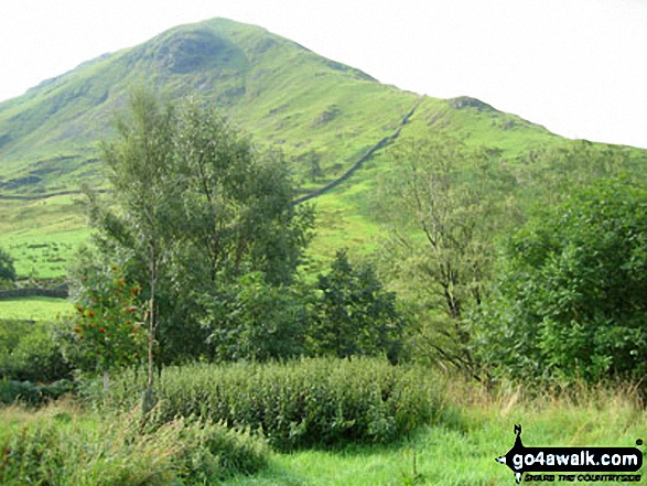 Hartsop Dodd Photo by Ivor Bennett