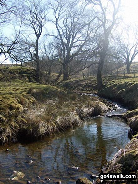 Skelshaw Brook