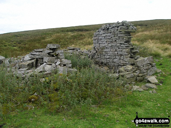 Ruin on the lower slopes of Redgleam (Harwood Common)