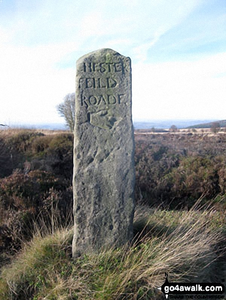 Ancient Guide Stoop/Sign Post South of Harland Sick This face is carved with the letters 'CHESTER FEILD ROADE' with a hand pointing the way towards Chesterfield