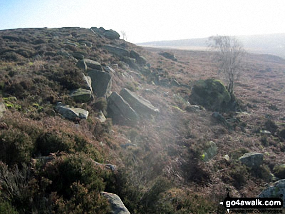 Harland Edge, Beeley Moor