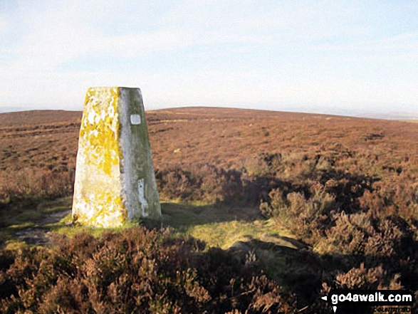 Beeley Moor (South East Top) Summit Trig Point