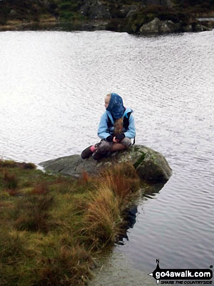 On the shore of Innominate Tarn near Hay Stacks (Haystacks)
