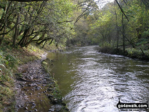 The River Wye in Chee Dale