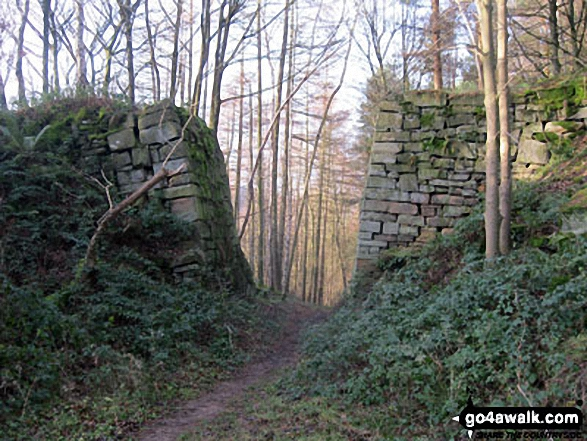 Two huge stone buttresses in Smeltingmill Wood near Beeley