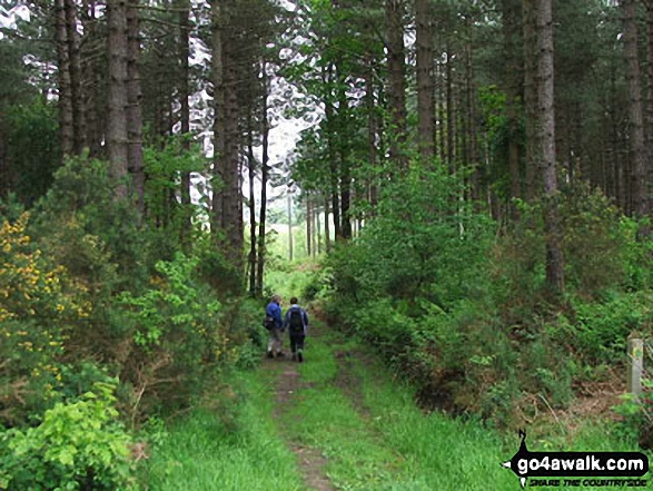 My friends Heather and Chris on Holt Country Park walk  Norfolk England walks
