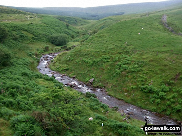 Nant Gihirych from the lay by at Pont Gihirych