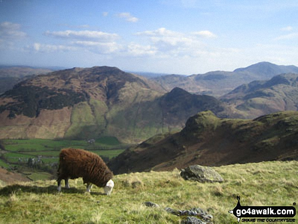 Looking across Great Langdale to Side Pike and Lingmoor Fell from Stickle Ghyll, The Langdale Pikes