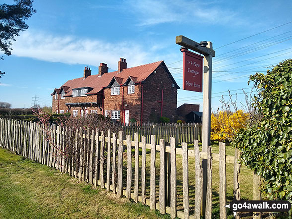 Walk ch102 Dunham Massey and The Bridgewater Canal from Lymm - New Cottages, Little Bollington