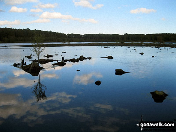 Blakemere Moss, Delamere Forest. Walk route map ch129 Hangingstone Hill (Eddisbury Hill) from Barns Bridge Gates, Hatchmere photo