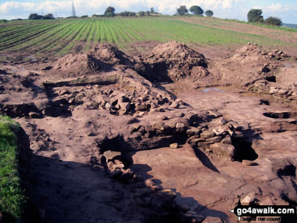 Eddisbury Hill Fort Excavations
