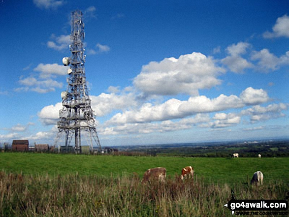 Communications Mast on the top of Hangingstone Hill (Eddisbury Hill). Walk route map ch129 Hangingstone Hill (Eddisbury Hill) from Barns Bridge Gates, Hatchmere photo