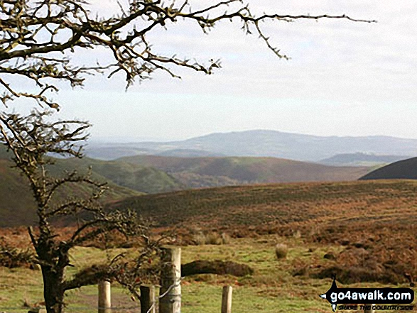 Church Stretton from Pole Bank (Long Mynd)