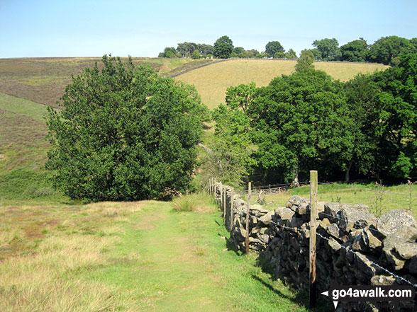 Walk ny190 Appleton-le-Moors from Hutton-le-Hole - The path near Mary Magdalene Well, Lastingham
