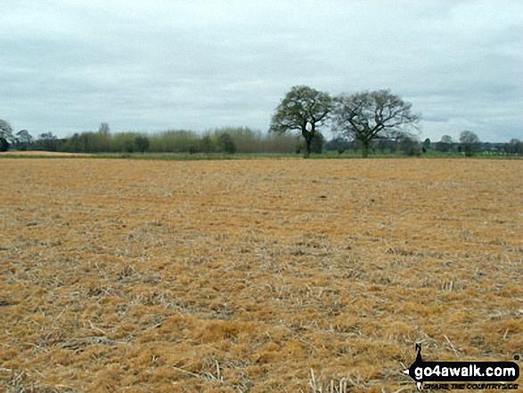 The Shropshire Countryside near Bentley Farm