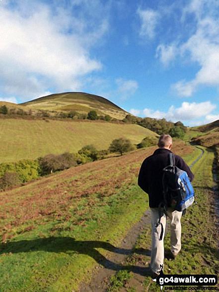 Walk fl119 Moel Arthur from Bwlch Arthur - On the way to Moel Arthur Hill fort