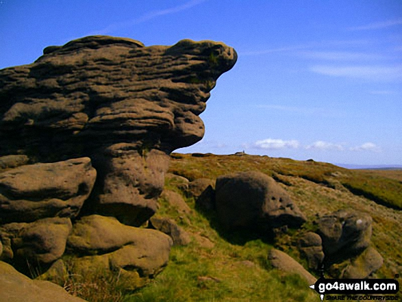 Walk Picture/View: Rock sculptures on Lad Law (Boulsworth Hill) in The South Pennines & The Forest of Bowland, Lancashire, England by John Kirwin (5)