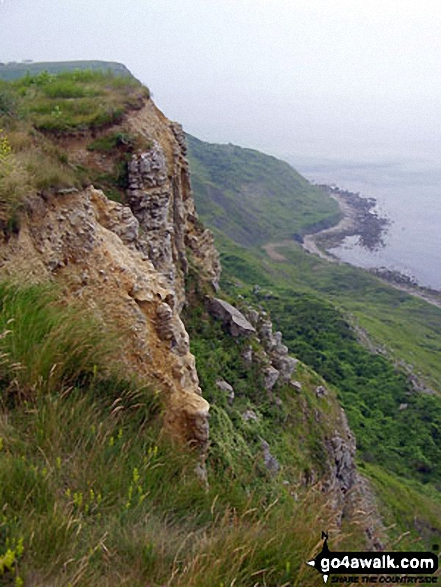 The South West Coast Path near St Aldhelm's Head (St Alban's Head). Walk route map do101 Swyre Head and The Jurassic Coast from Durdle Door photo