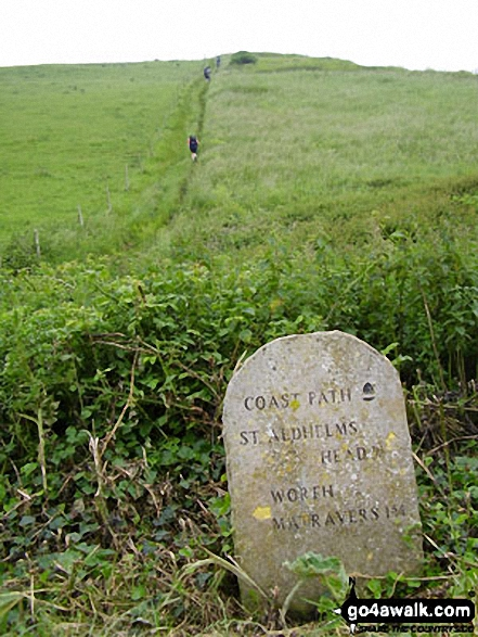 The South West Coast Path milepost near St Aldhelm's Head (St Alban's Head)