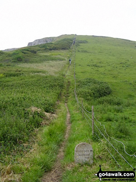 The South West Coast Path close to St Aldhelm's Head (St Alban's Head)