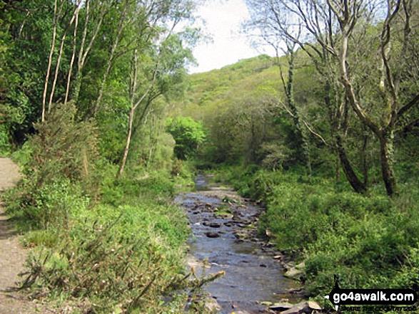 The River Valency approaching Boscastle