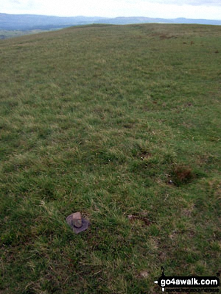 The tiny cairn marking the true summit of Fan Llia